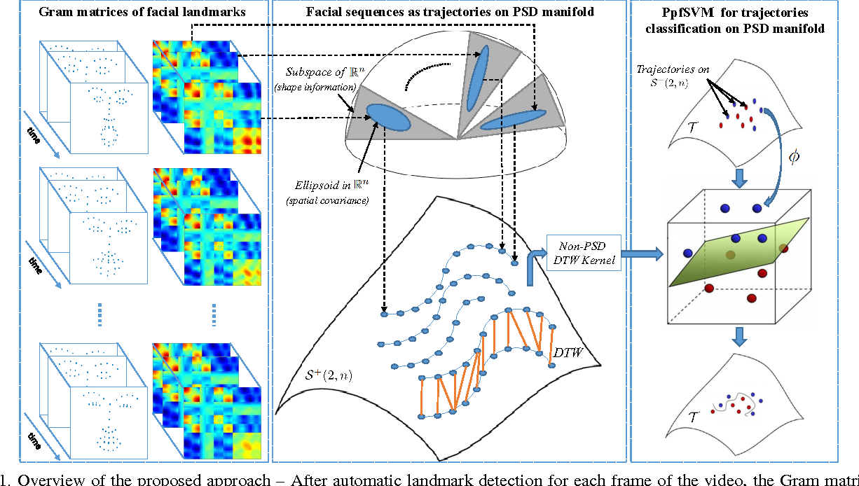 Figure 1 for A Novel Space-Time Representation on the Positive Semidefinite Con for Facial Expression Recognition