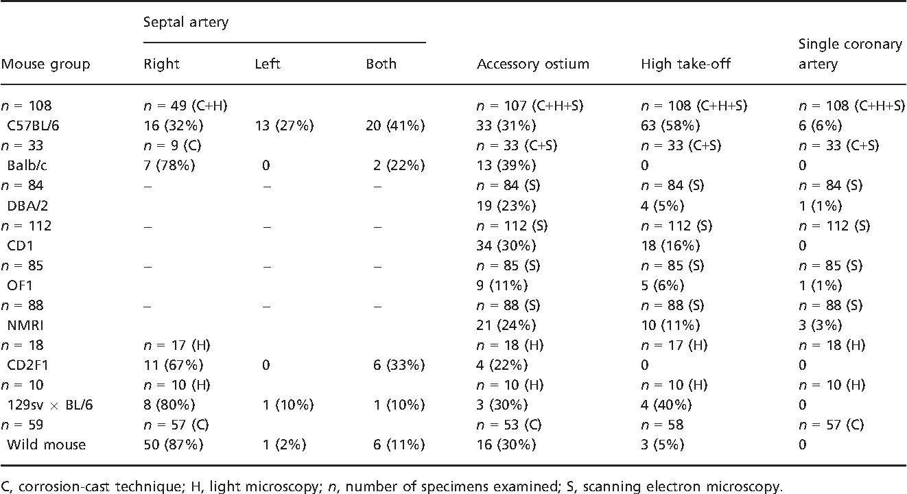 Unusual anatomical origins of the coronary arteries in C57BL/6 mice ...