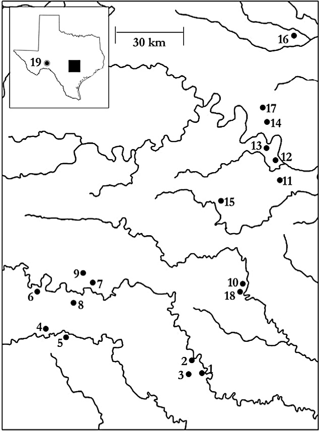 Figure 1 From Cryptic Diversity Within And Amongst Spring Associated