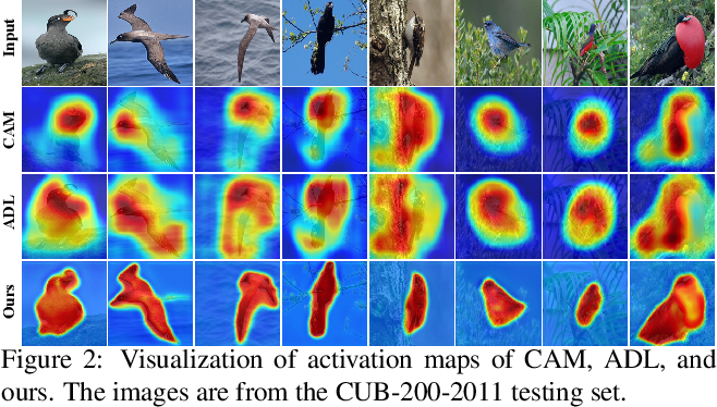 Figure 3 for Online Refinement of Low-level Feature Based Activation Map for Weakly Supervised Object Localization