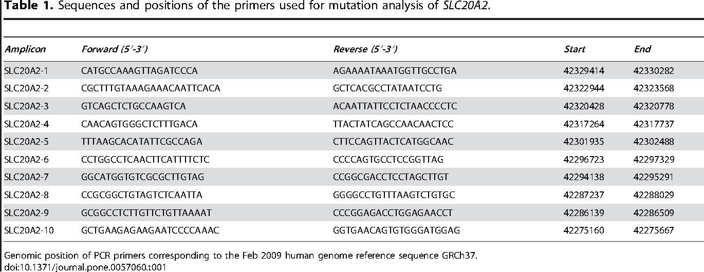Table 1. Sequences and positions of the primers used for mutation analysis of SLC20A2.
