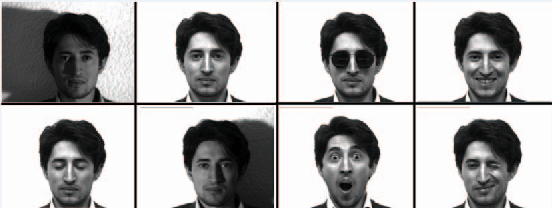 Figure 1 for Face Recognition Using Scattering Convolutional Network