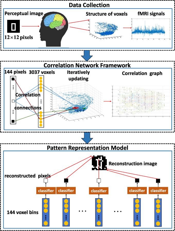 Figure 2 for A Novel Brain Decoding Method: a Correlation Network Framework for Revealing Brain Connections