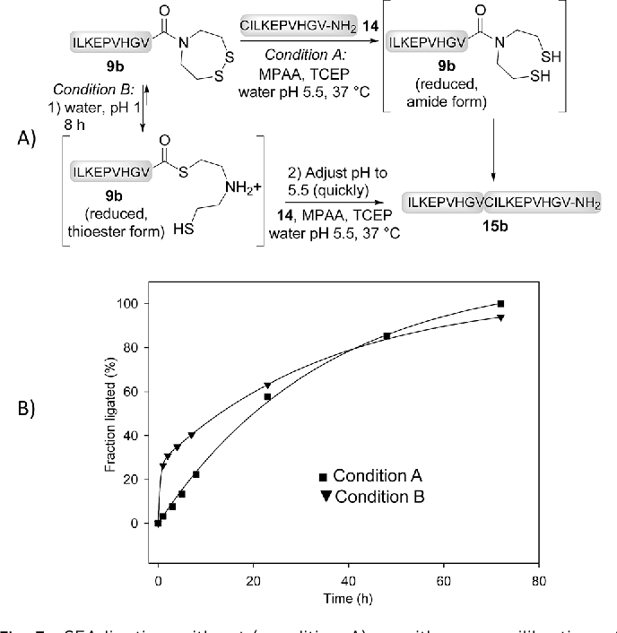Figure 3 from Accelerating chemoselective peptide bond