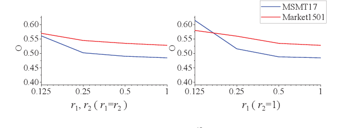 Figure 3 for Resolution-invariant Person Re-Identification