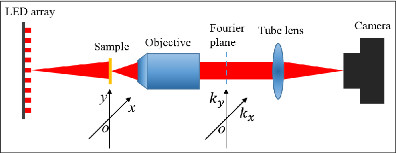 Figure 1 for Fast and robust misalignment correction of Fourier ptychographic microscopy