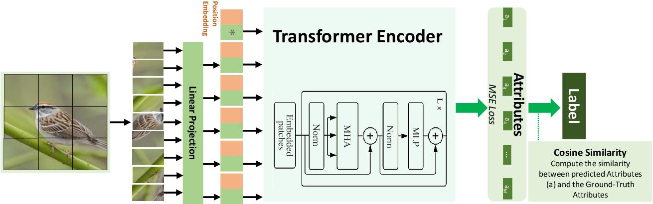 Figure 3 for Multi-Head Self-Attention via Vision Transformer for Zero-Shot Learning