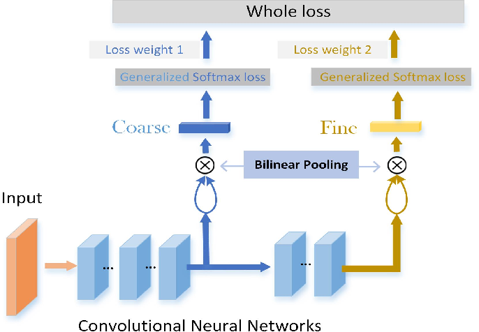 Figure 3 for Semantic Bilinear Pooling for Fine-Grained Recognition