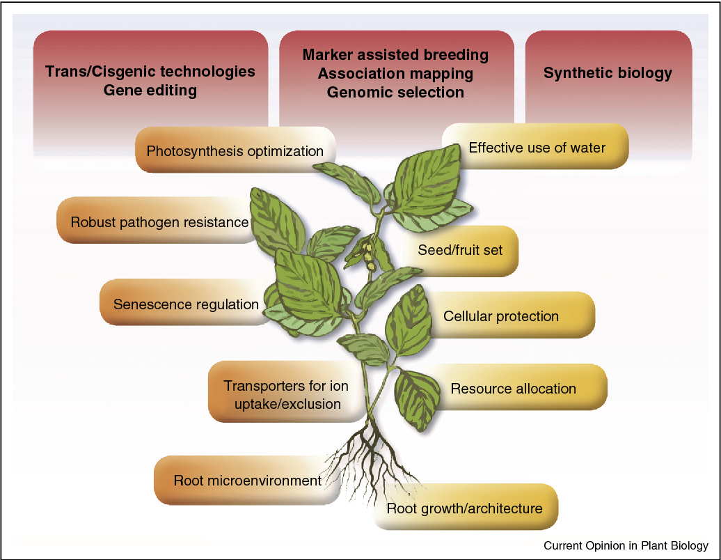 genomics and breeding for climate resilient crops kole chittaranjan