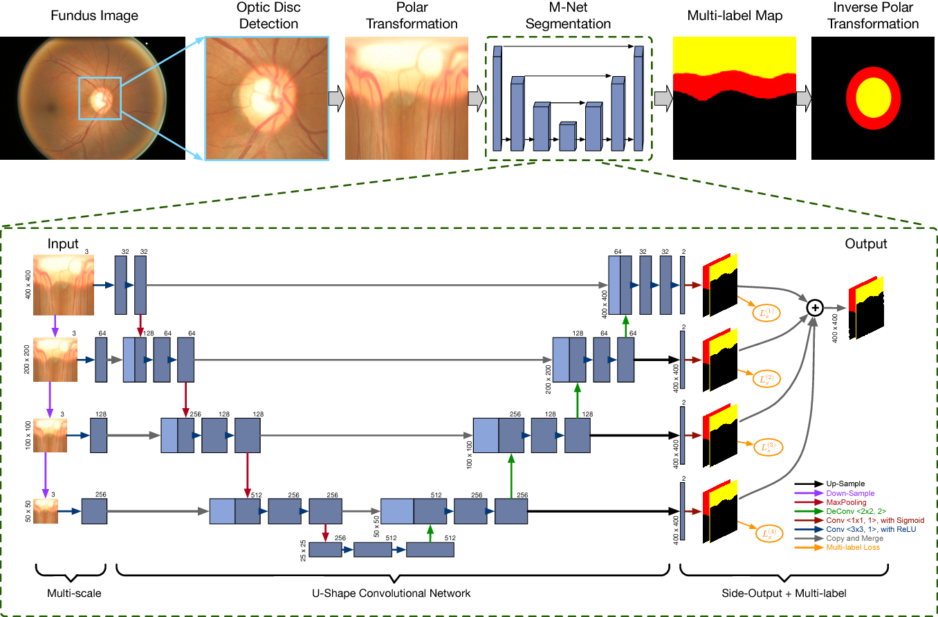 Figure 2 for Joint Optic Disc and Cup Segmentation Based on Multi-label Deep Network and Polar Transformation