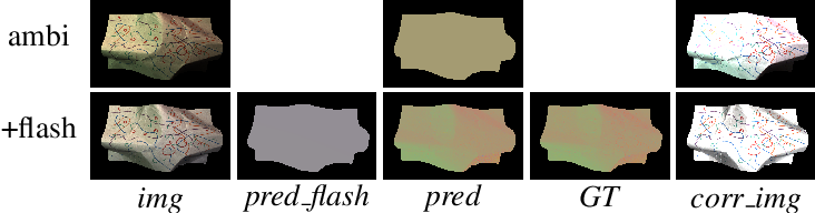 Figure 1 for Flash Lightens Gray Pixels