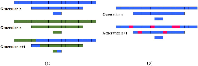 Figure 3 for Evolution-based Fine-tuning of CNNs for Prostate Cancer Detection