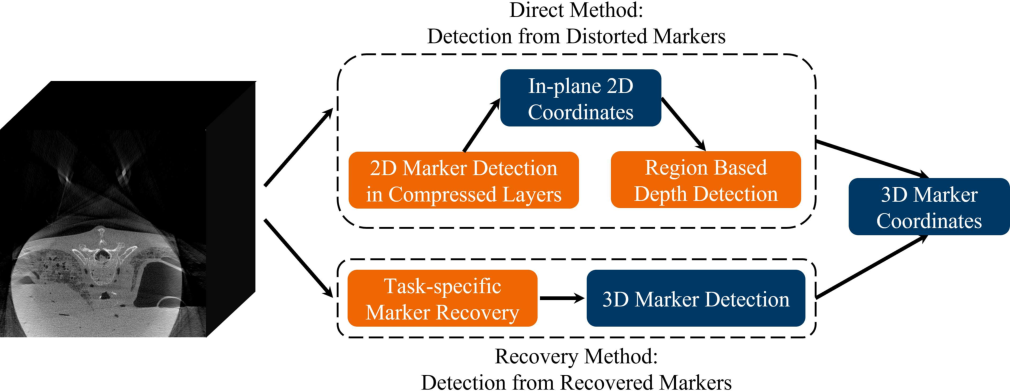 Figure 3 for Fiducial marker recovery and detection from severely truncated data in navigation assisted spine surgery