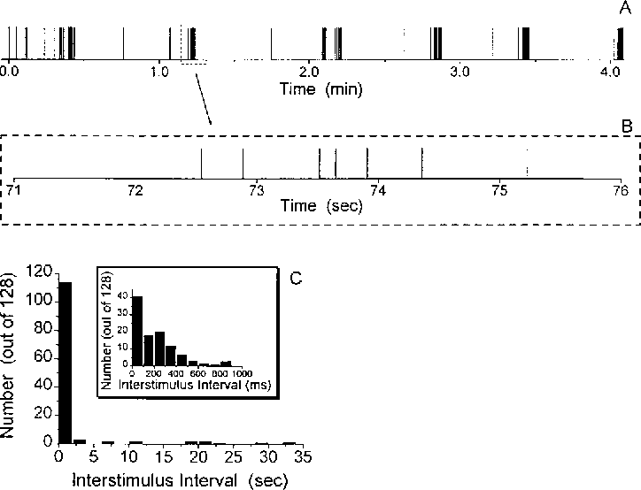 Figure 2. Natural Stimulus Patterns Show Highly Variable Timing