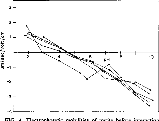 FIG. 4. Electrophoretic mobilities of pyrite before interaction with T. ferrooxidans (0) and after interaction with T. ferrooxidans for 1 h (0), 24 h (0), 120 h (A), and 240 h (V).