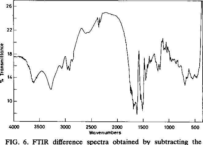 FIG. 6. FTIR difference spectra obtained by subtracting the spectra of ferrous ion-grown T. ferrooxidans cells from those of sulfur-grown cells.