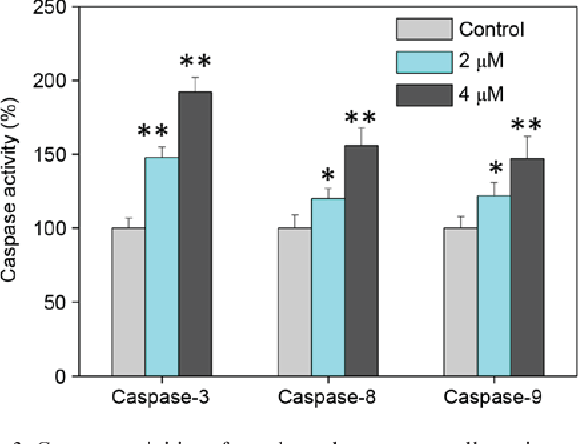 Figure 3. Caspase activities of esophageal squamous cell carcinoma cells