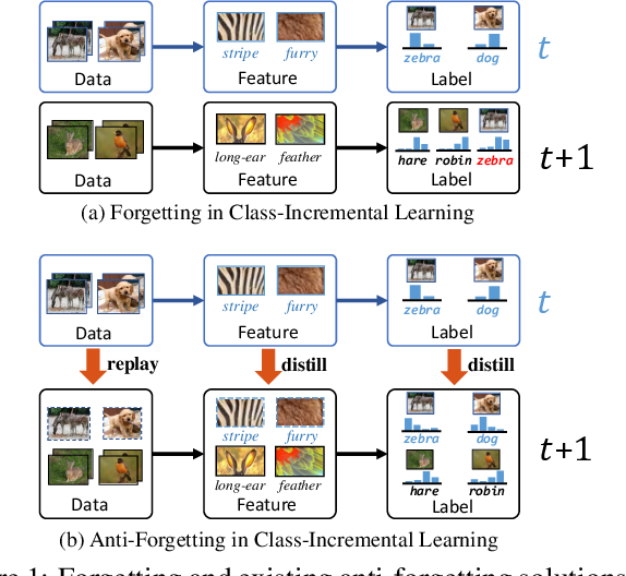 Figure 1 for Distilling Causal Effect of Data in Class-Incremental Learning