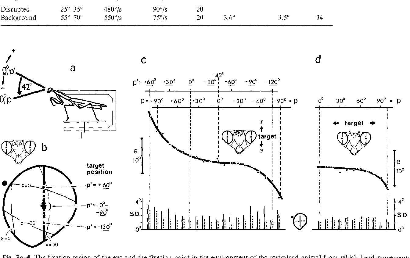 Foveal fixation and tracking in the praying mantis - Semantic Scholar