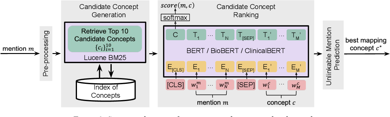 Figure 2 for BERT-based Ranking for Biomedical Entity Normalization