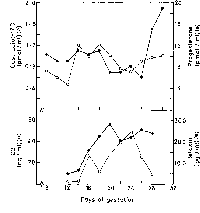 Figure 3 from Serum concentrations of oestradiol-17beta