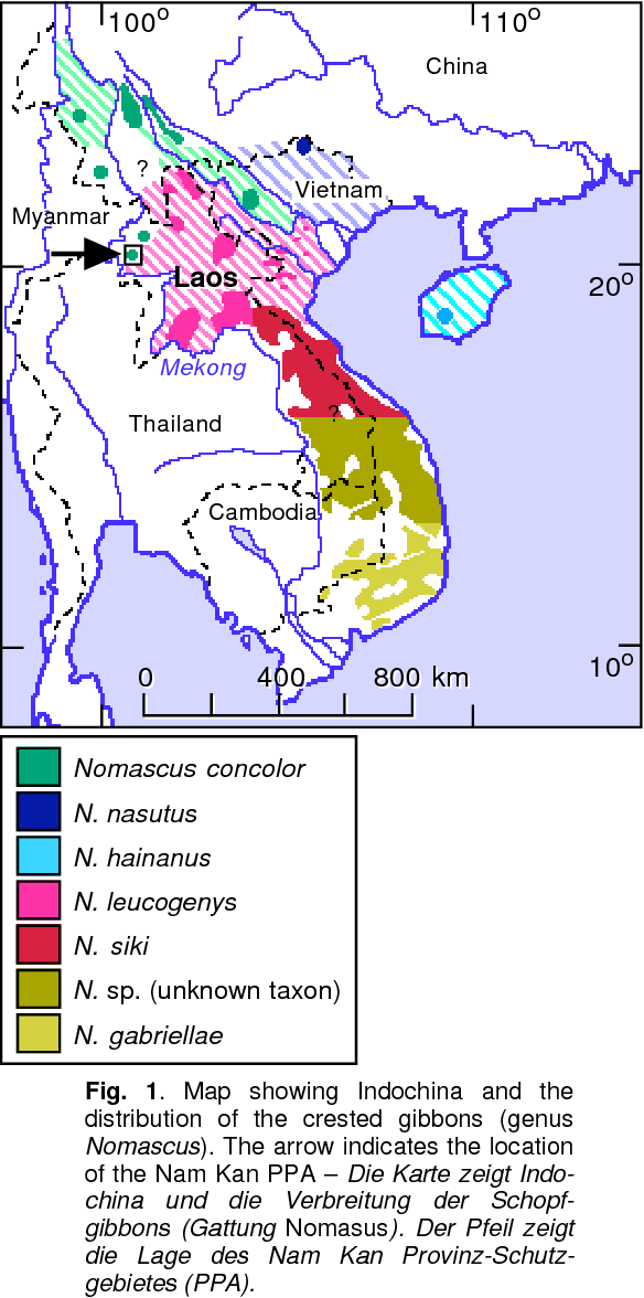 Laos Karte.Figure 1 From First Field Data On The Laotian Black Crested Gibbon