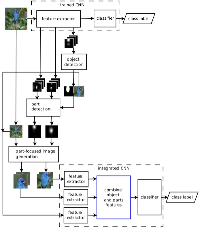 Figure 1 for Fine-Grained Categorization via CNN-Based Automatic Extraction and Integration of Object-Level and Part-Level Features