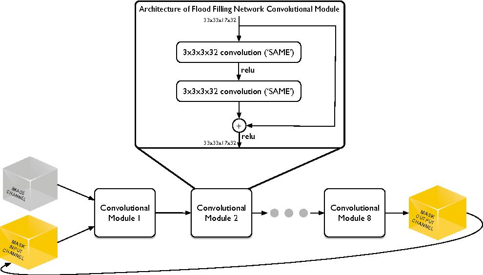 Figure 1 for Flood-Filling Networks