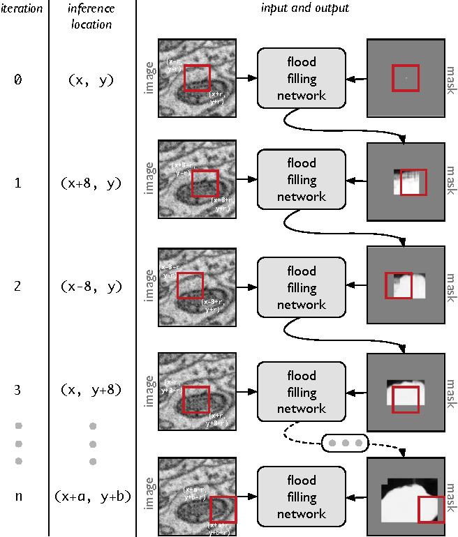 Figure 3 for Flood-Filling Networks