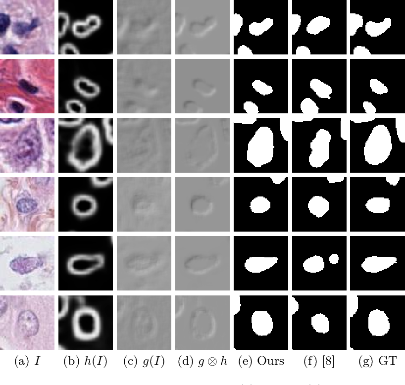 Figure 3 for PseudoEdgeNet: Nuclei Segmentation only with Point Annotations