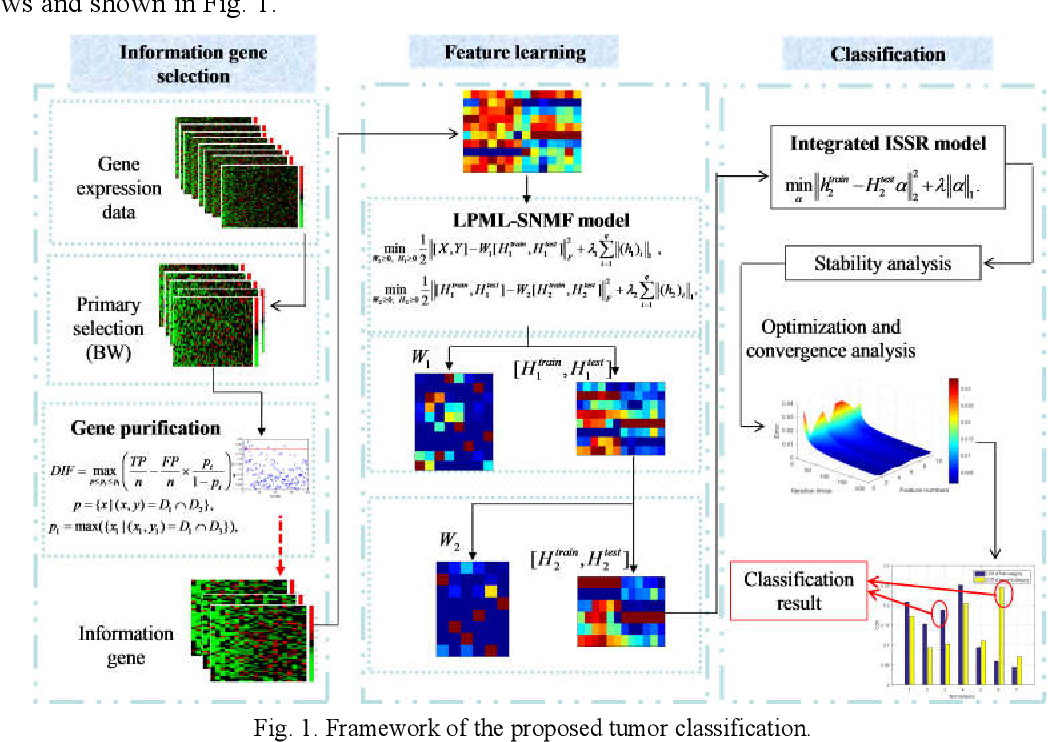 Figure 1 for Breast Tumor Classification Based on Decision Information Genes and Inverse Projection Sparse Representation
