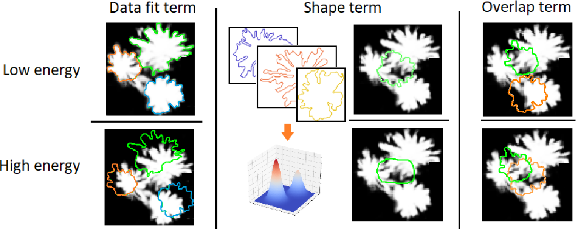 Figure 3 for Instance segmentation of fallen trees in aerial color infrared imagery using active multi-contour evolution with fully convolutional network-based intensity priors