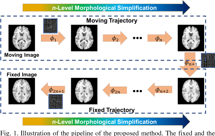 Figure 1 for Deep Morphological Simplification Network (MS-Net) for Guided Registration of Brain Magnetic Resonance Images