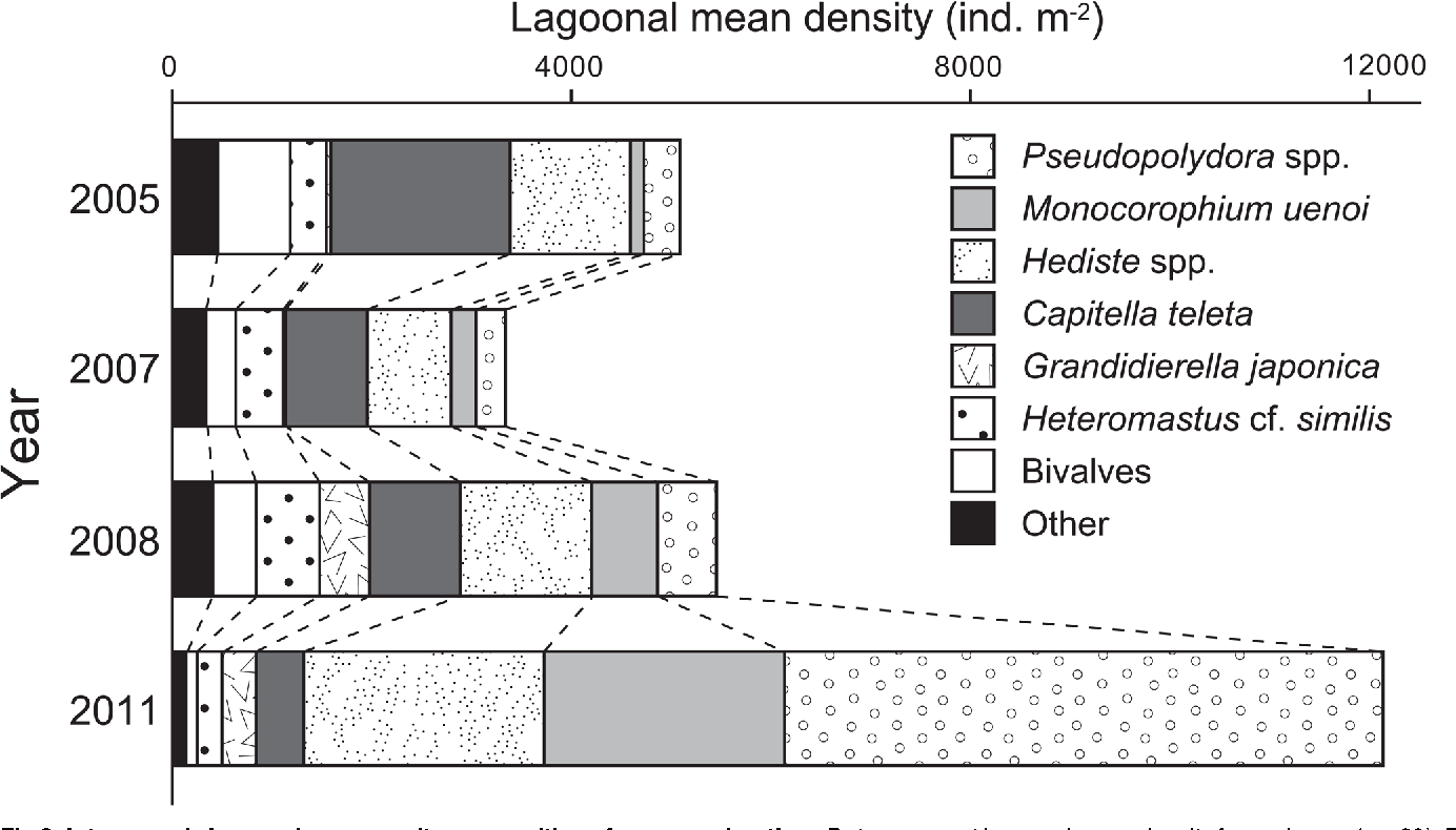 """Fig 8. Interannual changes in community composition of macrozoobenthos.Data represent lagoonal mean density for each year (n = 30). Bivalves and other less dominant taxa were summated as """"bivalves"""" and """"others,"""" respectively."""