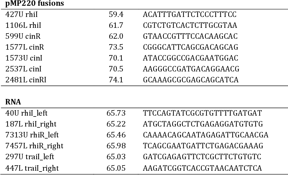 Table 11. Oligonucleotides used in this work (continuation)