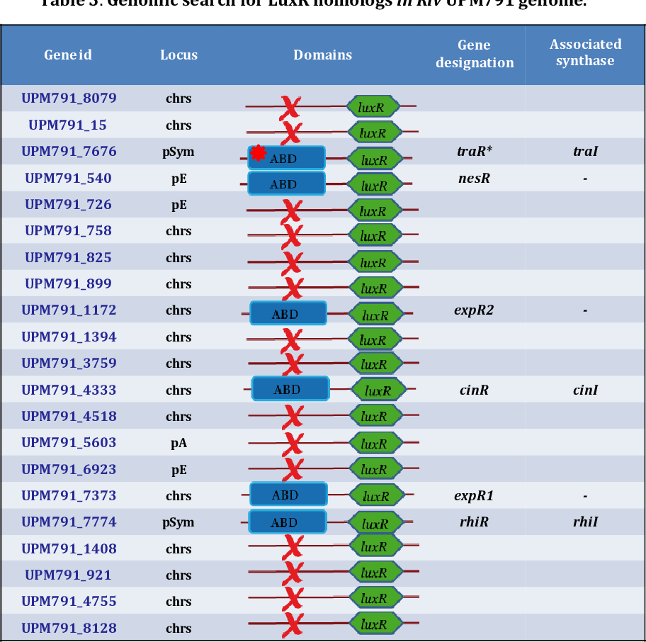 Table 3. Genomic search for LuxR homologs in Rlv UPM791 genome.