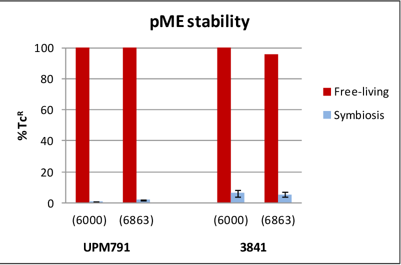 Figure 24. Analysis of pME6863 stability. Bars in black show the percentage of TcR colonies obtained from TY liquid cultures as referred to the number of colonies counted on YMA plates. Bars in grey show the percentage of TcR colonies recovered from nodules as referred to the number of colonies grown on YMA plates.
