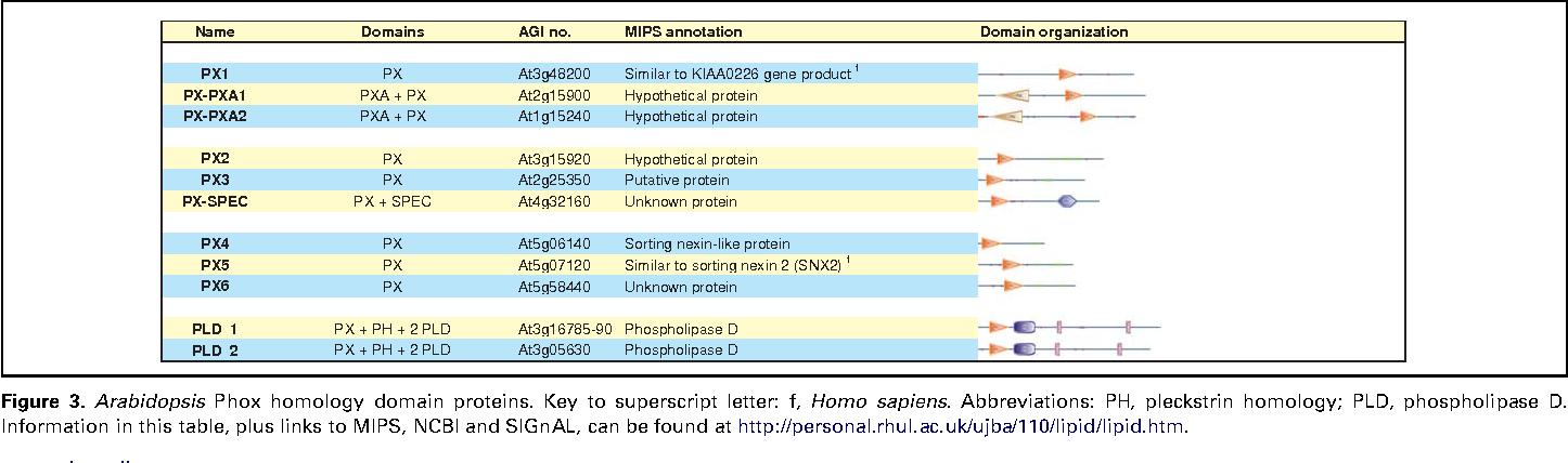 lipid signaling in plants munnik teun