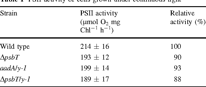 Table 1 PSII activity of cells grown under continuous light