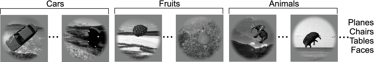 Figure 1 for Deep Neural Networks Rival the Representation of Primate IT Cortex for Core Visual Object Recognition