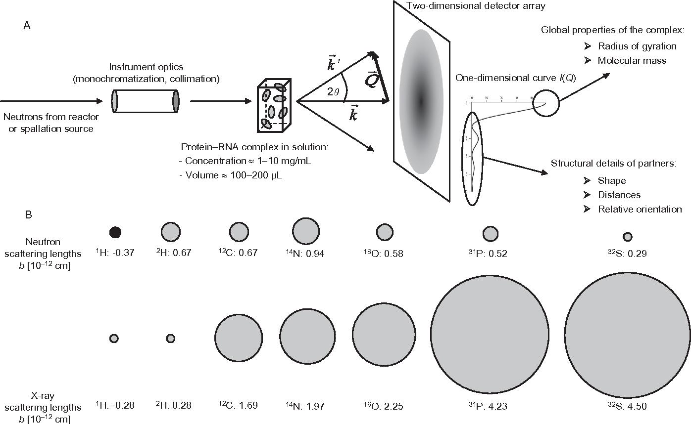 figure 1 (a) schematic representation of a sans experimental setup  the  wave vector
