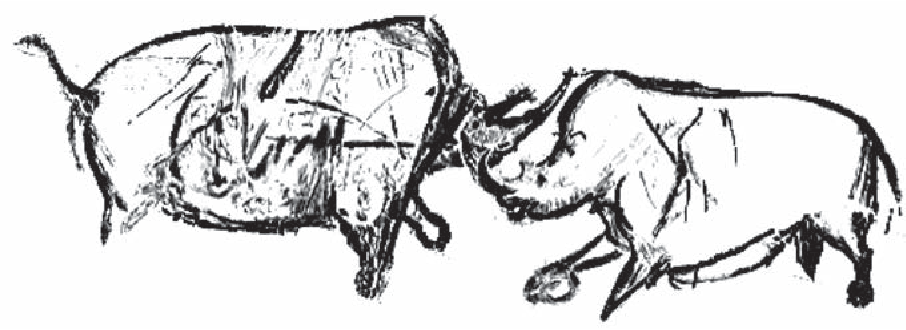 Figure 21.1. Rhinoceroses, the panel of the horses, Chauvet Cave, France. (Re-drawn after Fritz & Tosello 2007, fig. 11.)