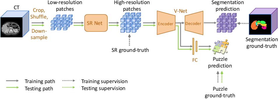 Figure 3 for Domain Adaptive Relational Reasoning for 3D Multi-Organ Segmentation