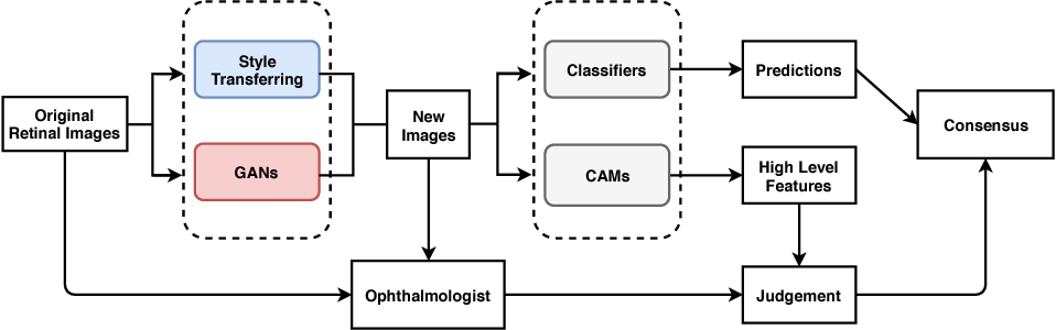 Figure 1 for Synthesizing New Retinal Symptom Images by Multiple Generative Models