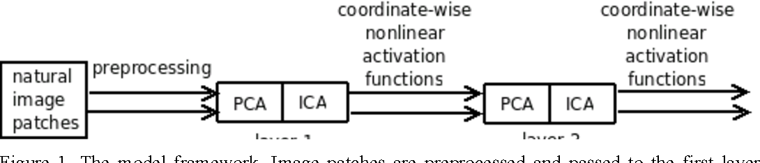 Figure 1 for Efficient Visual Coding: From Retina To V2