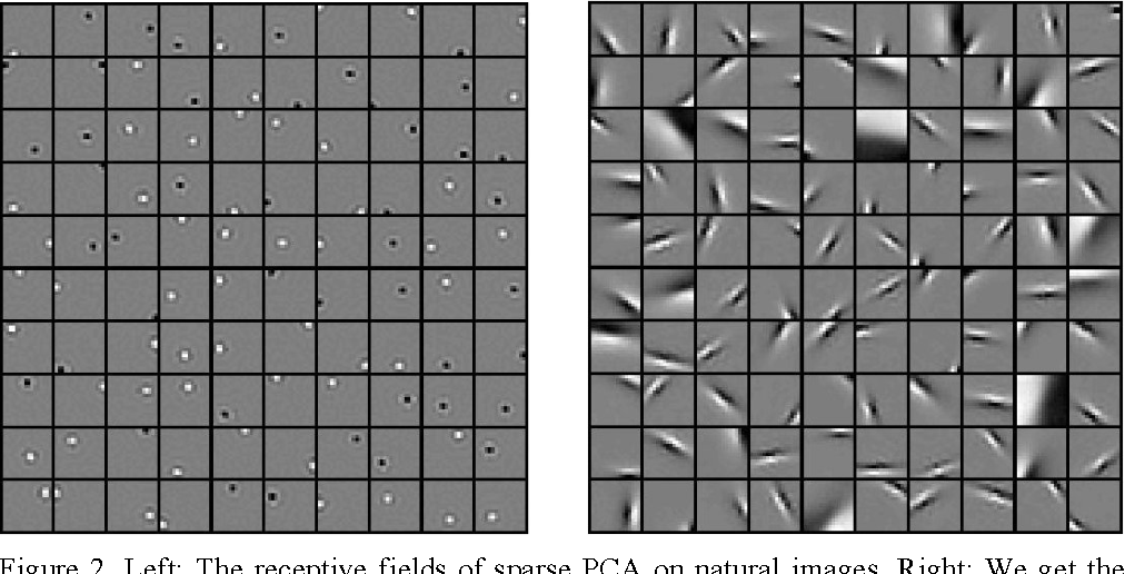 Figure 2 for Efficient Visual Coding: From Retina To V2