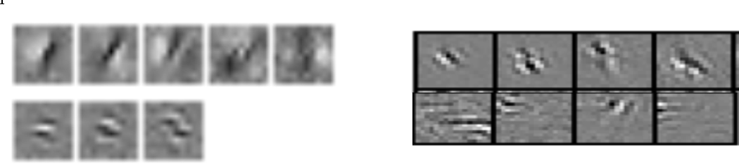 Figure 4 for Efficient Visual Coding: From Retina To V2