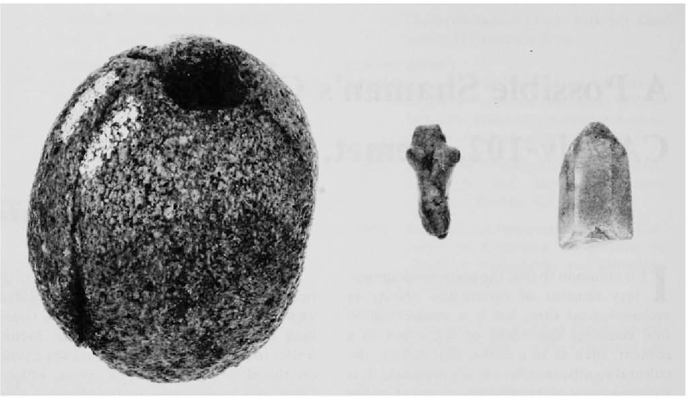 Figure 1 from A possible shamans's cache from CA-RIV-102, Hemet