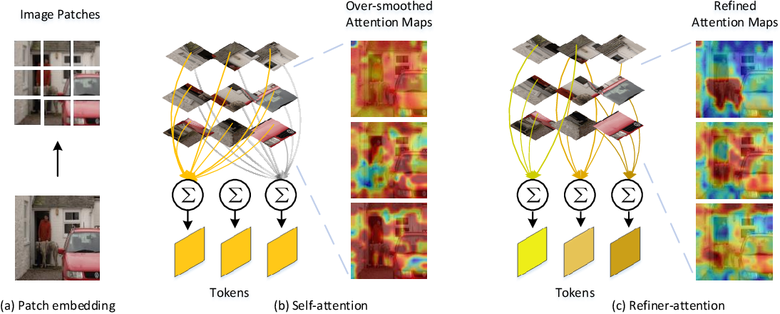 Figure 1 for Refiner: Refining Self-attention for Vision Transformers