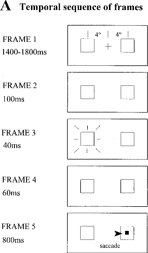 Figure 1 from Effects of pre-cues on voluntary and reflexive saccade ...